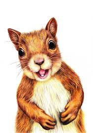 Small Picture Squirrel ORIGINAL Painting Acrylic Painting cartoon drawing