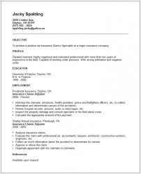 Insurance Claims Representative Sample Resume Magnificent Insurance Resume Sample Musiccityspiritsandcocktail