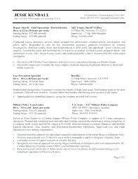 Government Resume Examples Sample Of Federal Government Resume