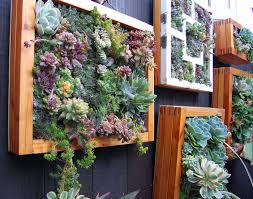 creative diy garden fence ideas 13