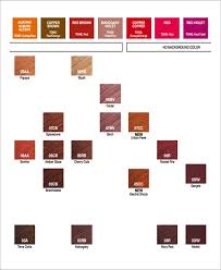 Hair Color Chart Template 9 Free Word Pdf Documents