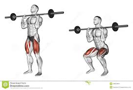 Chest Workout Chart Step By Step Exercising Squats On His Chest Stock Illustration