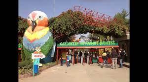Gaziantep Hayvanat Bahçesi Gezisi -1 - YouTube