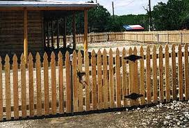 picket fence gate plans. Simple Gate Picket Fence Gate Design Construction With Plans B