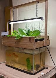 benefits of medical aquaponic gardening