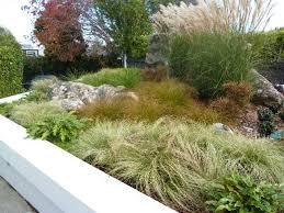 low maintenance garden design garden