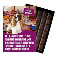 cavalier king charles spaniel funny birthday gift for dog lover or owner 85 gram boxed chocolate