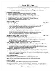 best professional resume