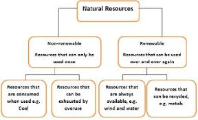 Prepare A Chart Prepare A Flow Chart Of Various Natural Resources