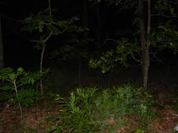 The Spook Light In Joplin Missouri Spook Light 2013 Clay County Paranormal Research Of Kansas