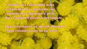 Mimosa minima 2011 8 marzo festa della donna poesia d'amore - YouTube