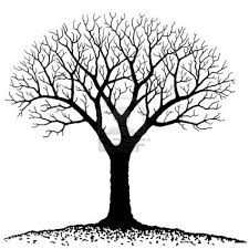 Barren clipart family tree - Pencil and in color barren clipart ...