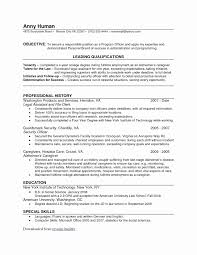 New Resume Template Google Aguakatedigital Templates