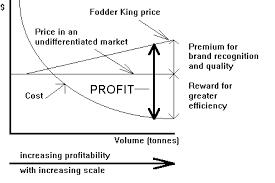 Economies Of Scale Diagram