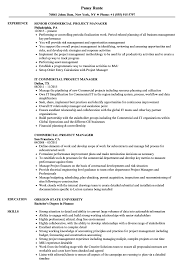 Commercial Project Manager Sample Resume Commercial Project Manager Resume Samples Velvet Jobs 7