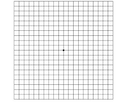 1 4 Grid Paper Printable Free Printable 1 4 Inch Grid Paper 1 4