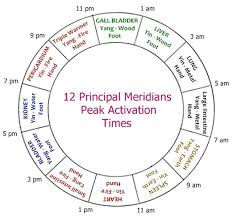 Tcm Time Chart Reiki 12 Primary Meridians Chinese Medicine Traditional
