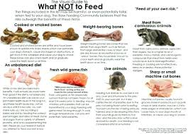 bone meal for dogs. Raw Feeding Can Be Great For Dogs With Allergies Always Consult Your Vet And Do Research . Bone Meal Lb H
