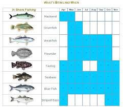 Fish Size Chart Dorcas2charters