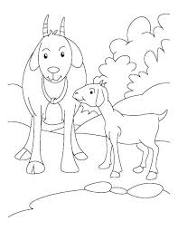 Free Farm Animal Coloring Pages For Preschoolers Raovat24hinfo