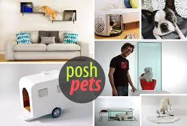 modern pet furniture  accessories for design lovers