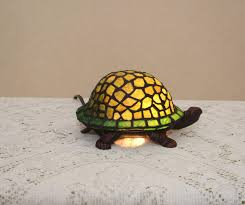 drowsy turtle night sky