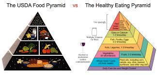 food pyramid 2014. Delighful Food The USDA Food Pyramid Vs An EvidenceBased In 2014 K