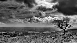 Black And White Landscape Ultra HD ...