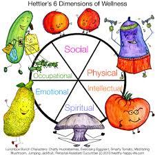 and wellness essay health and wellness essay