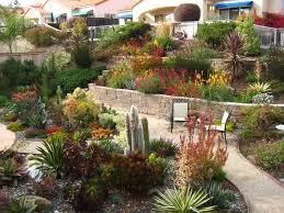 Small Picture Garden Design Drought Tolerant Backyard Designs Landscape And