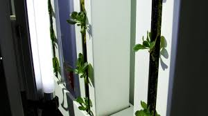 grow a vertical garden indoors with the farm wall light kit