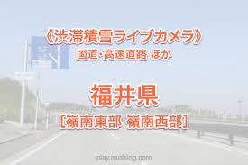 敦賀 市 ライブ カメラ