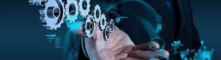 Systems Analysis Brain Capital