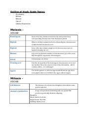 Domain Chart Docx Domain Bacteria Archaea Kingdom