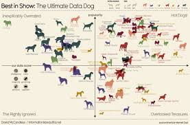 dog chart visual dog chart ranks dog breeds according to data dumb