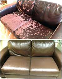 mold on leather sofa cats and leather couches fix leather couch es faux ling rip scratches
