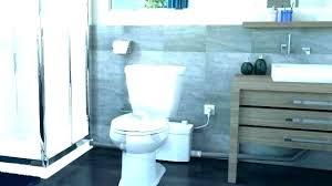 Toilet Pumper Basement Toilets System Thekitchenpeople Info