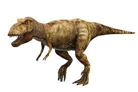 <b>T-Rex</b> | Wild Republic