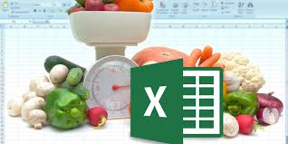 diet excel sheet how to build perfect meals with the iifym calculator and excel