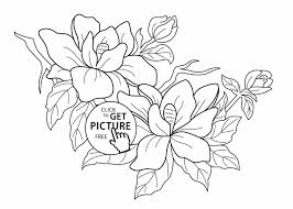 Small Picture Spring Flowers Coloring Book Pages Coloring Pages