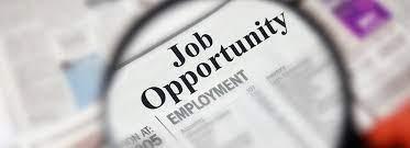 Startup Job Opportunities | iDendron