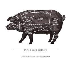 Vector Pork Cut Chart Retro Hand Animals Wildlife Food