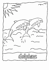 Dolphin Tale Printables Elegant Winter The Dolphin Coloring Pages