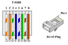 ethernet eia tia 568b wiring standards scientific diagram ethernet eia tia 568b wiring standards