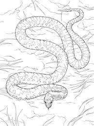 Small Picture Gopher Snake coloring page Free Printable Coloring Pages