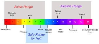 The Ph Of Your Shampoo And Conditioner Is Important! — Timelesslymirna