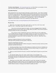 Executive Summary Sample For Resume Examples Beste Wort Executive