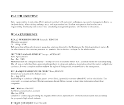 Objective Statement For Resume Example Marketing Resume Objective Statements Sales Statement Template 23
