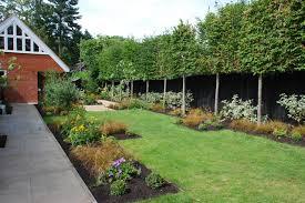 Back garden after planting Woking Lisa Cox Designs