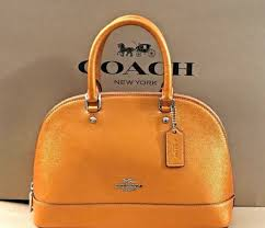 NEW Coach F29170 Mini Sierra Satchel Handbag in Tangerine Metallic Leather